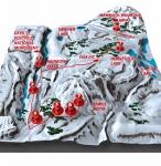 Mammoth Mountain Map