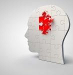 Stroke Jigsaw Head