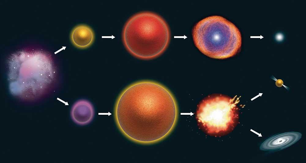 Starlife  U00ab Graphic Design  Photorealistic Cgi  Information